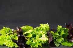 L'insalata della lattuga va sul piatto di pietra, posto per testo Fotografia Stock Libera da Diritti