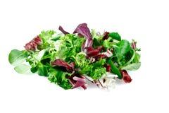 L'insalata mista lascia il frisee, il radicchio e la valerianella Isolato su priorità bassa bianca Immagine Stock