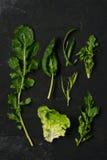 L'insalata si inverdisce la disposizione del piano Immagini Stock