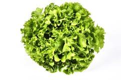 L'insalata verde fresca della lattuga lascia il primo piano Lattuga di verdure dell'insalata Immagine Stock Libera da Diritti