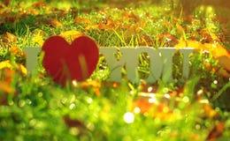 L'inscription sur l'amour en bois de fond au sujet des fleurs Photo stock