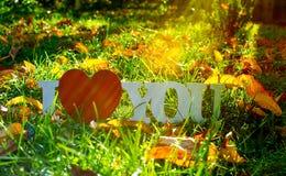 L'inscription sur l'amour en bois de fond au sujet des fleurs Photo libre de droits