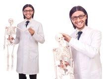 L'insegnante divertente con lo scheletro isolato su bianco Immagine Stock Libera da Diritti