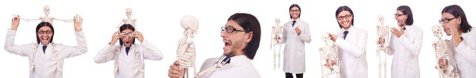 L'insegnante divertente con lo scheletro isolato su bianco Fotografie Stock