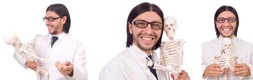 L'insegnante divertente con lo scheletro isolato su bianco Fotografia Stock Libera da Diritti