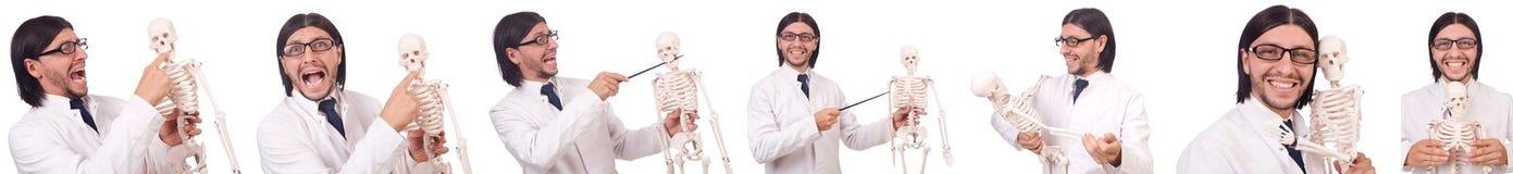 L'insegnante divertente con lo scheletro isolato su bianco Immagini Stock Libere da Diritti