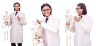 L'insegnante divertente con lo scheletro su bianco Fotografie Stock
