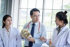 L'insegnante ha insegnamento allo studente circa scienza ed anatomico asiatici in laboratorio immagini stock libere da diritti