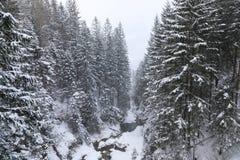 L'insenatura delle montagne immagine stock