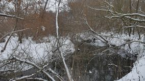 L'insenatura nell'acqua corrente dell'inverno della natura di legni, abbellisce il piccolo fiume nella neve Fotografia Stock