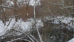 L'insenatura nell'acqua corrente dell'inverno della natura di legni, abbellisce il piccolo fiume nella neve Fotografie Stock
