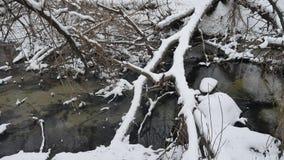 L'insenatura nell'acqua corrente dell'inverno della natura di legni, piccolo fiume dentro abbellisce la neve Fotografia Stock