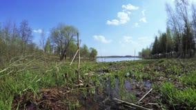 L'insenatura sfocia nel lago archivi video