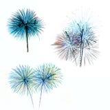 L'insieme dei fuochi d'artificio variopinti si accende su fondo bianco Fotografia Stock