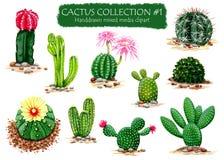 L'insieme del cactus disegnato a mano di alta qualità pianta il clipart per i progetti di progettazione multipli Fotografia Stock Libera da Diritti