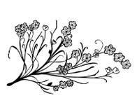 L'insieme del fiore scarabocchia il fiore Fotografie Stock