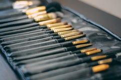 L'insieme del fronte professionale compone il set di pennelli per visagiste nel salone di bellezza Cosmetico, accessori di cura d Immagini Stock