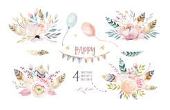 L'insieme del mazzo d'annata di boho, gli elementi dell'acquerello dei fiori, il giardino ed i fiori selvaggi, foglie, si ramific Fotografia Stock