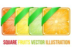 L'insieme del quadrato fruttifica fette con il nastro verde Fotografia Stock Libera da Diritti