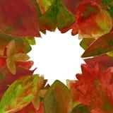 L'insieme dell'acquerello rosso lascia il fondo Fotografia Stock Libera da Diritti