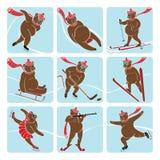 L'insieme dell'orso bruno gioca gli sport invernali. Icone Fotografia Stock
