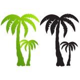 L'insieme della palma proietta il vettore Fotografia Stock Libera da Diritti
