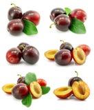 L'insieme della prugna fresca fruttifica con i fogli verdi Fotografia Stock Libera da Diritti