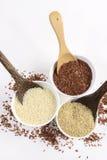 L'insieme della raccolta del riso del gelsomino ha i carboidrati, la vitamina e minerale quel buon per salute su fondo bianco iso Fotografia Stock