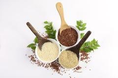 L'insieme della raccolta del riso del gelsomino ha i carboidrati, la vitamina e minerale quel buon per salute su fondo bianco iso Fotografia Stock Libera da Diritti