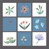L'insieme delle carte o delle stampe floreali sveglie, manifesto, carte dell'invito, modello, cartoline d'auguri con gli elementi illustrazione di stock