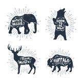 L'insieme delle etichette disegnate a mano con gli animali vector le illustrazioni e la l Immagini Stock Libere da Diritti
