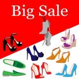 L'insieme delle scarpe variopinte del tacco alto del ` s delle donne di modo, stivali appende sui nastri Scarpe isolate casuali e illustrazione di stock