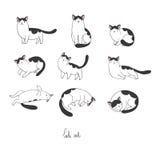 L'insieme dello scarabocchio differente posa il gatto pets illustrazione di stock