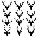 L'insieme di un cervo dirige la siluetta su fondo bianco Immagini Stock