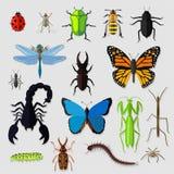 L'insieme di vari insetti progetta pianamente Immagine Stock Libera da Diritti