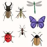 L'insieme di vari insetti progetta pianamente Fotografia Stock
