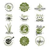 L'insieme di vettore delle erbe ed aromatizza le etichette, distintivi Fotografia Stock