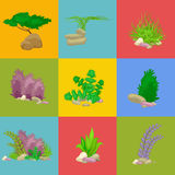 L'insieme ha isolato i coralli variopinti e le alghe, flora subacquea di vettore, fauna Fotografia Stock Libera da Diritti