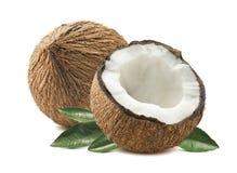 L'intera metà del taglio della noce di cocco lascia il backgro bianco isolato composizione Fotografie Stock