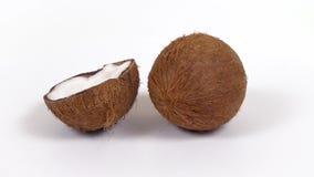 L'intera noce di cocco e la metà con polpa squisita che gira sul bianco hanno isolato il fondo Cochi senza cuciture di Loopable stock footage