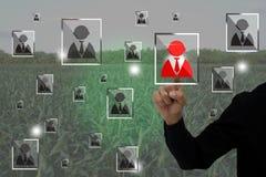 L'Internet du concept d'agriculture de choses, agriculture futée, utilisation d'agriculteur a augmenté l'application de réalité p Images stock