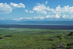 L'intervallo di Alaska nel fiume del McKinley Fotografie Stock Libere da Diritti