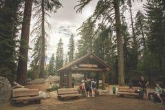 L'inUSA de la Californie de parc national de séquoia le voyageur s'attaque dans la traînée d'arbre de Sherman à la nation de séqu Images stock