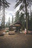 L'inUSA de la Californie de parc national de séquoia le voyageur s'attaque dans la traînée d'arbre de Sherman à la nation de séqu Photo stock