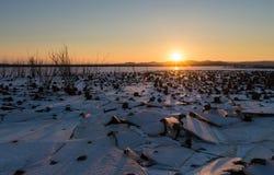 L'inverno è venuto lago congelato Fotografie Stock Libere da Diritti