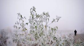 L'inverno comning Immagini Stock Libere da Diritti