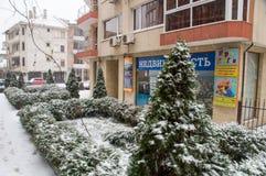 L'inverno di Snowy si inverdisce Pomorie, Bulgaria Fotografia Stock