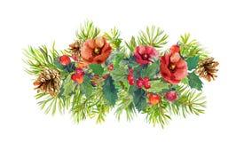 L'inverno fiorisce, albero di abete, vischio di natale watercolor Immagini Stock