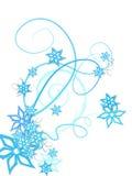 L'inverno fiorisce la decorazione Immagini Stock