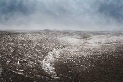 L'inverno, il paesaggio della bufera di neve colpisce i prati Fotografia Stock Libera da Diritti